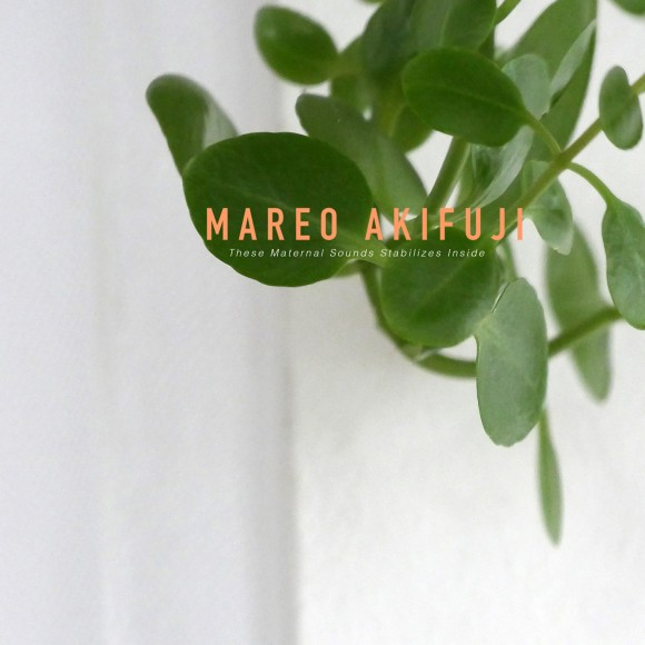 Mareo Akifuji - These Maternal Sounds Stabilizes Inside
